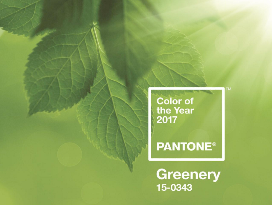 GREENERY COLOR DEL AÑO 2017, COLOR OF THE YEAR 2017